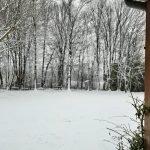 Neve all'asilo 4